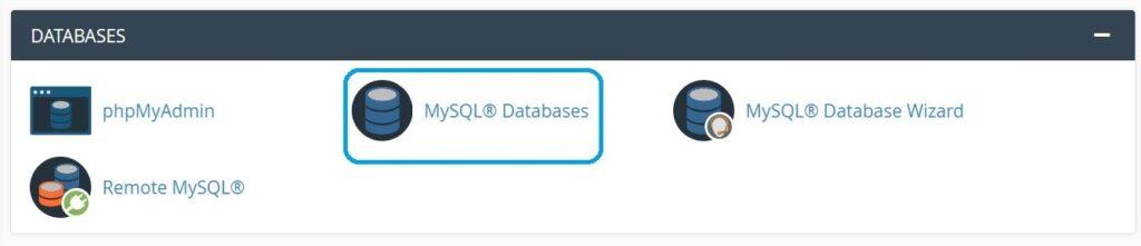 mysql database wordpress