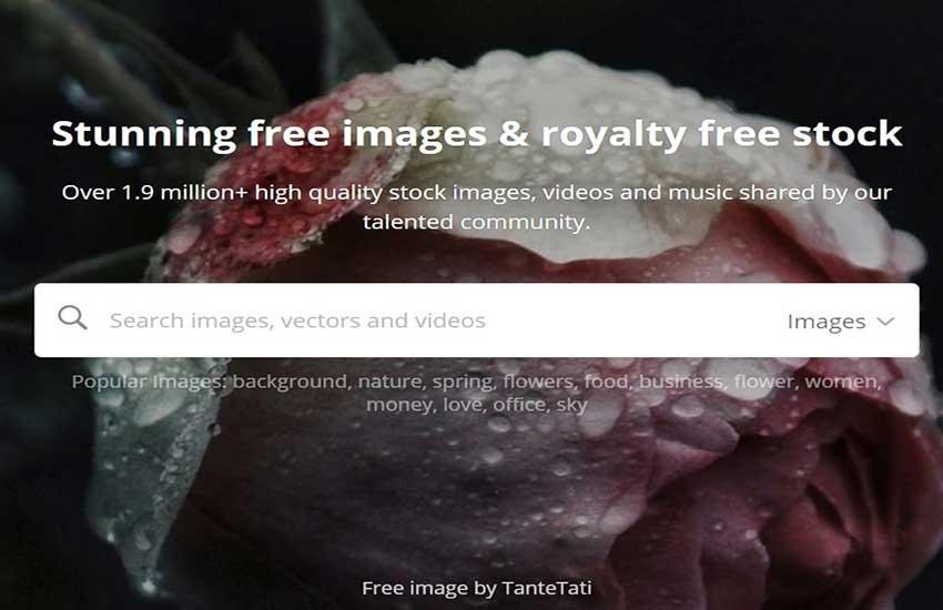 pixabay free image website